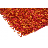 Shaggy Red and Orange Rug